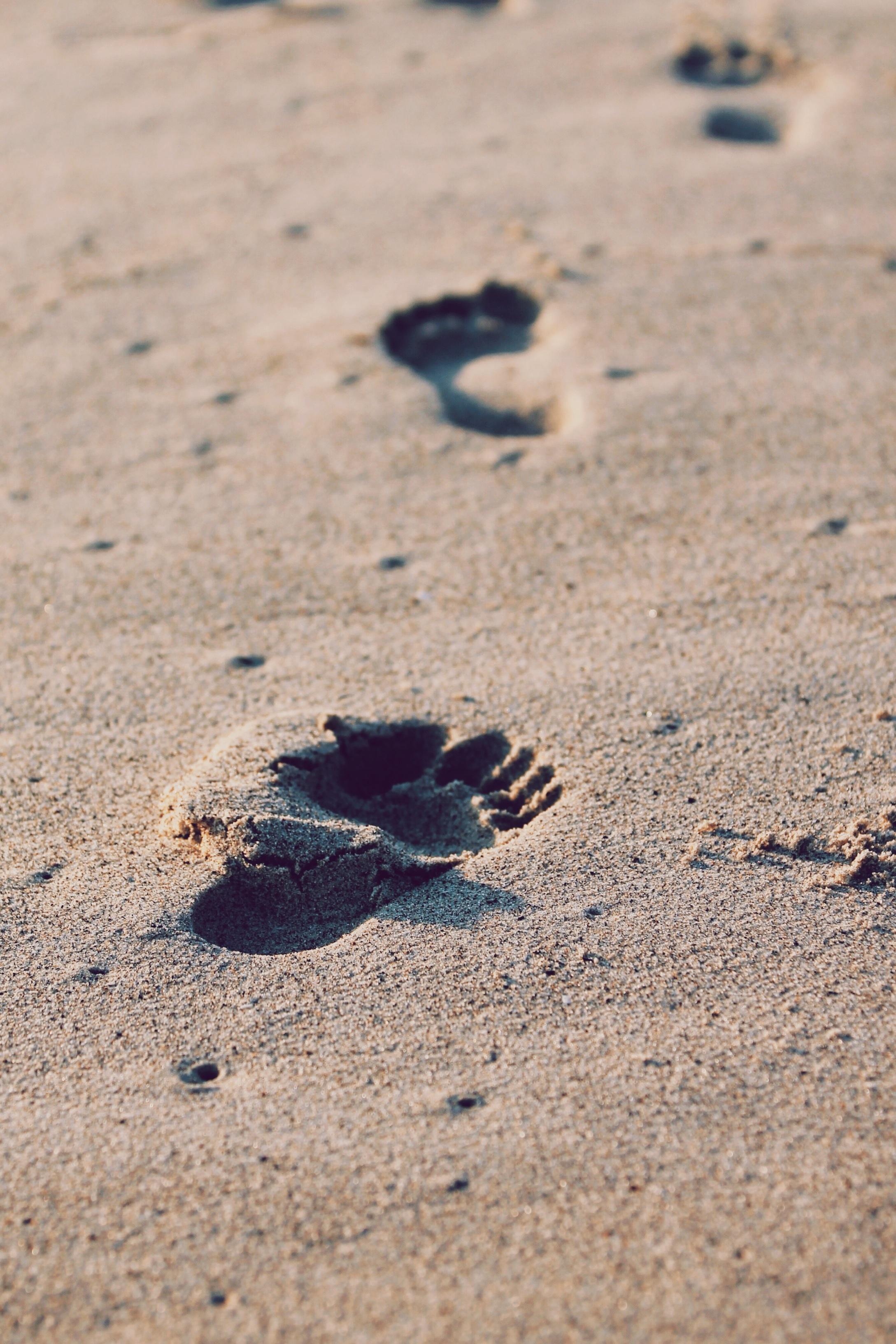 Primul pas în terapie: relația terapeutică